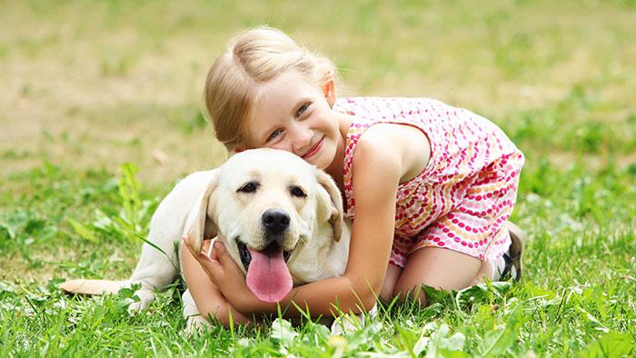Krankenversicherung für Hund: Wichtiger Schutz für ...